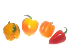 Colorful ripe peppers stock images