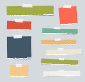 Colorful ripped blank note paper are stuck on gray background Stock Photography