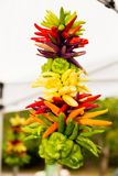 Hot Chile Ristra at a Farmer`s Market. Colorful ristra of chili peppers at a Farmer`s Market Stock Images