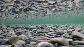 Colorful river bottom in late autumn with algae covered stones and rock reflection on surface tension. Underwater 4k resolution video stock video footage