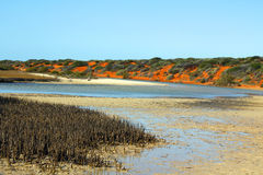 Colorful river estuary nearby entering the sea Stock Photo