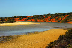 Colorful river estuary nearby entering the sea Royalty Free Stock Images