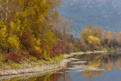 Colorful river shoreline. Royalty Free Stock Images