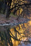 Colorful riverbank. On autumn evening Royalty Free Stock Photos