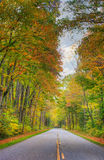 Colorful road Royalty Free Stock Photos