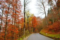 Colorful road. Peace and colorful road in autumn royalty free stock photography
