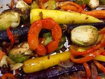 Colorful Roasted Veggies Stock Photography