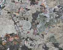 Colorful rock texture. Royalty Free Stock Image