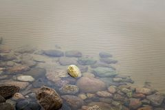 Colorful rocks at the bottom of a lake stock photography