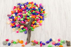 Colorful rocks forming a tree shape Royalty Free Stock Photography
