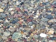 Colorful Rocks Under Ocean Surf New England USA Coastline royalty free stock images