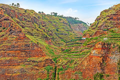 Colorful rocky cliff coast of Madeira with banana plantations Royalty Free Stock Photography