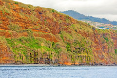 Colorful rocky cliff coast of Madeira Stock Photography