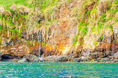Colorful rocky cliff coast of Madeira Royalty Free Stock Photo