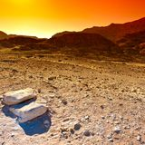 Colorful Desert in Israel. Stock Photography