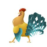 Colorful rooster Royalty Free Stock Photos