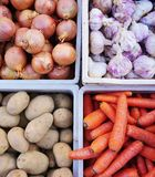 Colorful root vegetable. Fresh purple root vegetables at a French farmers' market Stock Photo