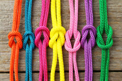 Colorful ropes Stock Image