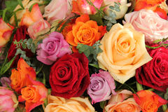 Colorful rose bouquet Royalty Free Stock Image