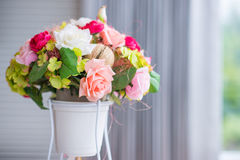 Colorful rose flower in pot Stock Photo