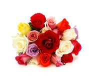 Colorful roses, beautiful flower bouquet Stock Photos