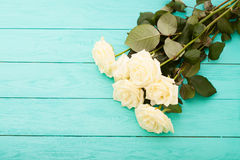 Colorful roses on blue wooden background royalty free stock photography