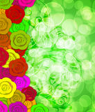 Colorful Roses Border with Blurred Background Royalty Free Stock Photography