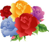 Colorful Roses bouquet. Vector clip art royalty free illustration