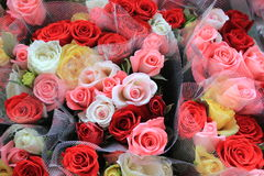 Colorful Roses. A few bouquets of colorful roses Stock Images