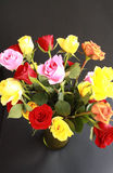 Colorful Roses in Green Vase Top View Royalty Free Stock Photos