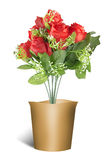 Colorful roses in pots valentines backgrounds Stock Photography