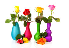 Colorful roses in vases Stock Photography