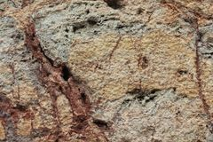 Colorful rough stone background with veins of ochre and tan Stock Image