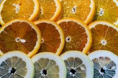 Colorful Round Citrius Fruit Background Royalty Free Stock Image