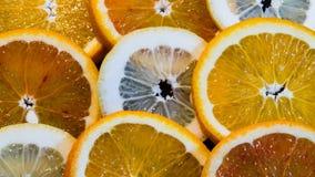 Colorful Round Citrius Fruit Background Stock Photos