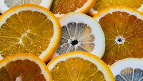 Colorful Round Citrius Fruit Background Stock Photography