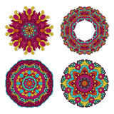 Colorful round floral design elements Royalty Free Stock Photos