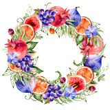Colorful round frame of watercolor flowers,pomegranate,grapes,orange,figs,orchid. Royalty Free Stock Photography