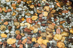 Colorful round stones under water. Royalty Free Stock Image