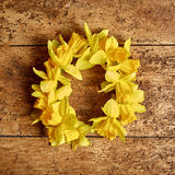 Colorful round wreath of yellow spring daffodils Stock Image