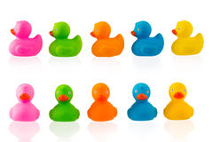 Colorful Rubber ducks isolated on white Stock Photography