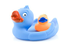 Colorful rubber ducks on white Royalty Free Stock Images