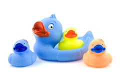 Colorful rubber ducks on white Royalty Free Stock Photo
