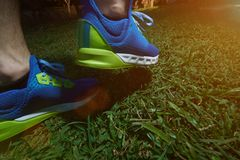 Colorful running shoes. On green grass background. Modern running shoes closeup outdoor stock images