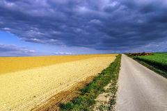 Colorful rural landscape with green fields Royalty Free Stock Photos