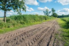 Colorful rural landscape with a sand road diagonally in the pict. Colorful rural landscape in the Netherlands with a sand road diagonally in the picture. There Royalty Free Stock Photos
