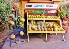 Colorful rural market maui hawaii state. For visitors of Maui , who likes adventures and something exotic like souvenirs and fruits and specific artfacts ,which royalty free stock photography