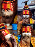Colorful Sadhu in Shivaratri Festival Royalty Free Stock Photos