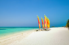 Colorful Sailing boat on the Tropical Beach at  Maldives. Sailing boat on the Tropical Beach at  Maldives Stock Photography