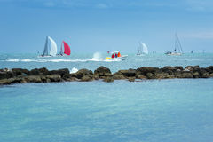 Colorful sailing boats on the sea. Panoramic view Royalty Free Stock Images
